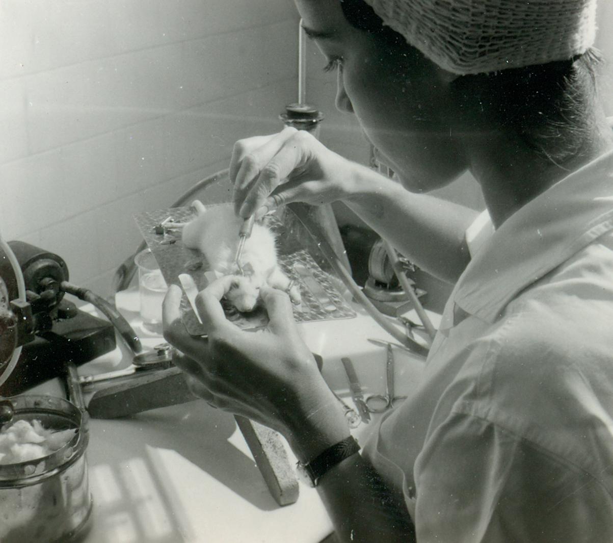 Laboratório de Psicologia Experimental - FFCL, 20.10.1965. Experimentos sobre os efeitos da Cannabis.